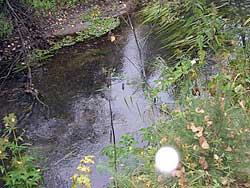 Окунево. Светящиеся шары над водой