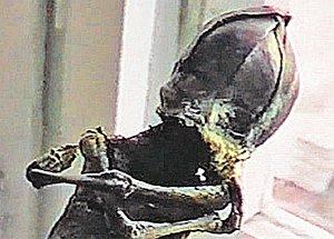Инопланетяне алёшенька